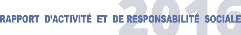IRCEM Rapport d'activité 2016